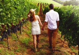A romantic holiday in the middle of the vineyards photo